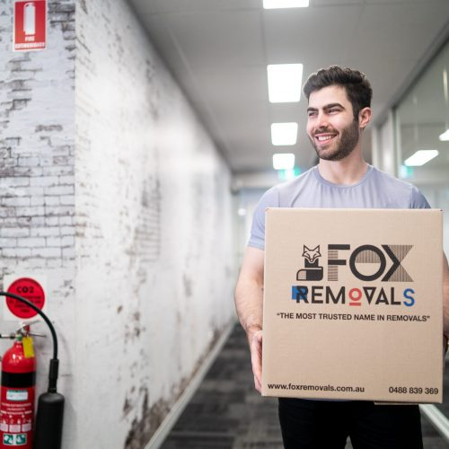 Fox_Office-9